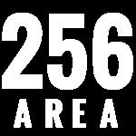 Logo 256area.com